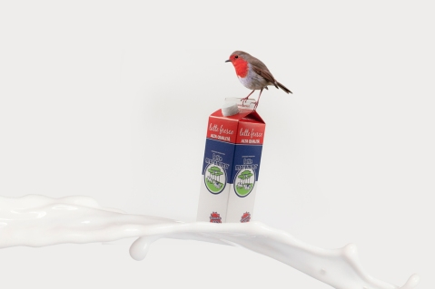 Latte-alta-qualita-lattemaremma-packaging-obostudio