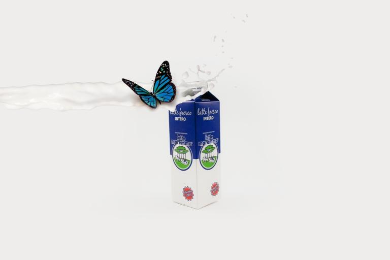 Latte-intero-lattemaremma-packaging-obostudio-2