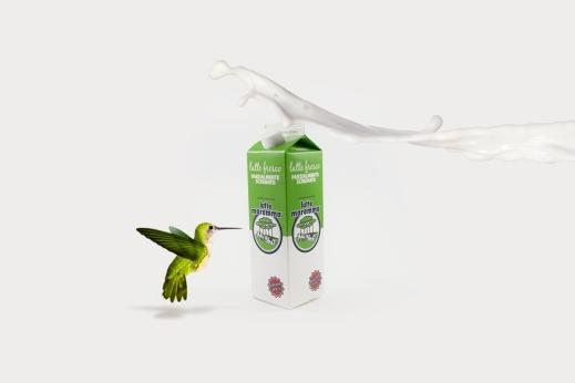 Latte-scremato-lattemaremma-packaging-obostudio